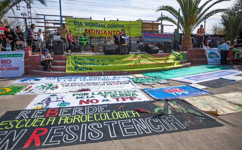 Marcha y Encuentro Plurinacional por el Agua y los Territorios desde Rangue-Paine