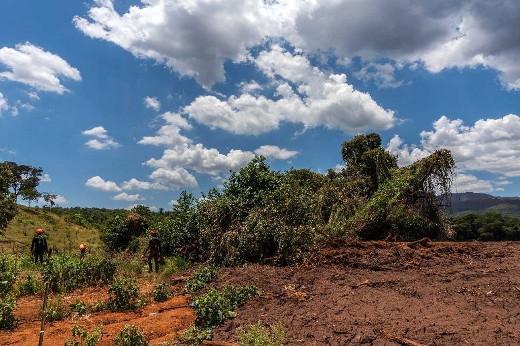 Brumadinho: un millón de afectados