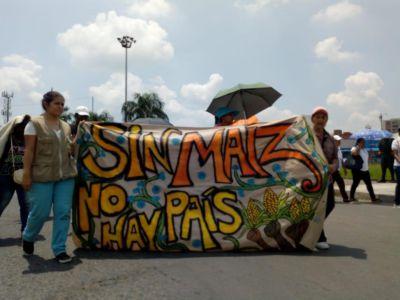 CENSAT Agua Viva-Amigos de la Tierra Colombia expresa su respaldo al Paro Nacional