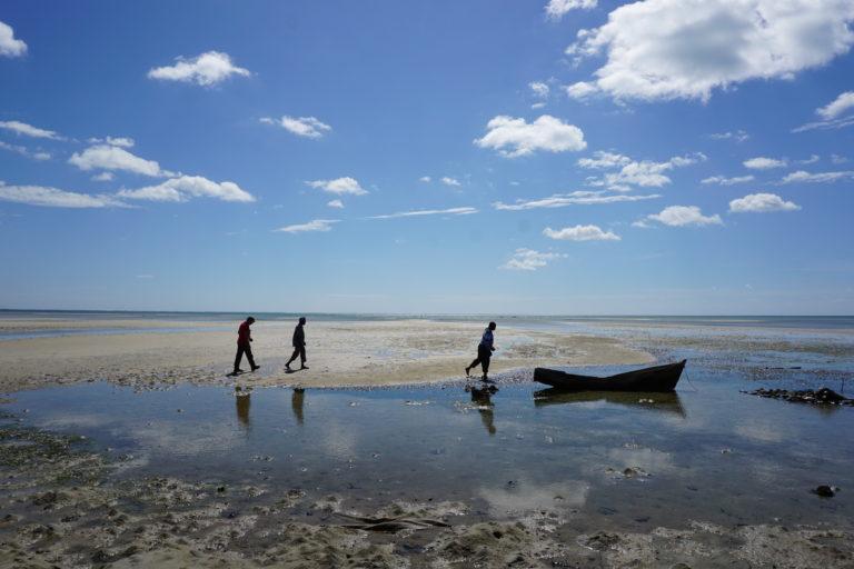 Total incumple obligaciones en Cabo Delgado
