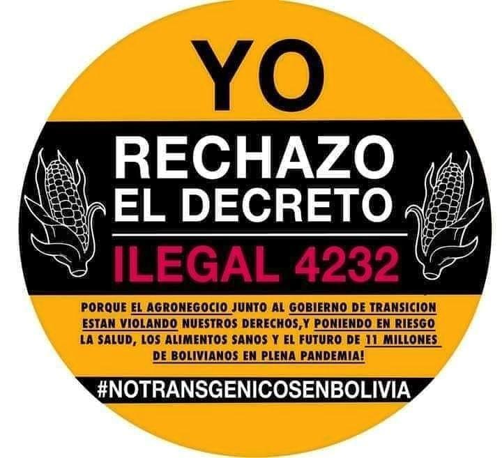 Bolivia Transgénicos Latinoamerica