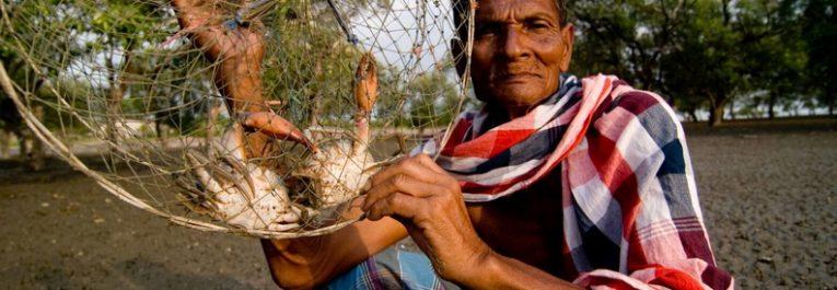 """""""La Declaración de Derechos Campesinos debe ser una herramienta política para la Reforma Agraria y la justicia social"""""""