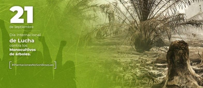 No al Desierto Verde