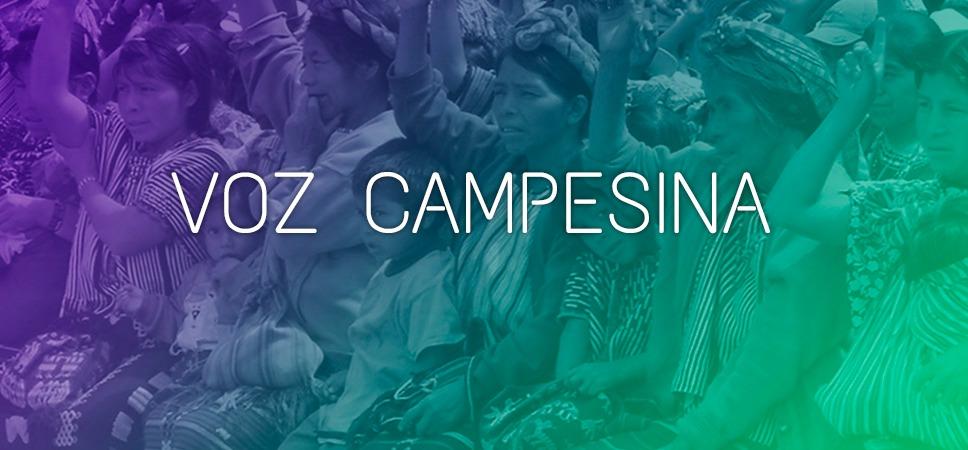 Voz Campesina 62