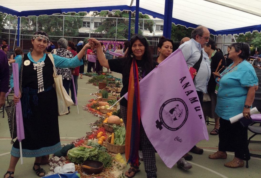 Elecciones históricas en Chile hacia una nueva Constitución plurinacional