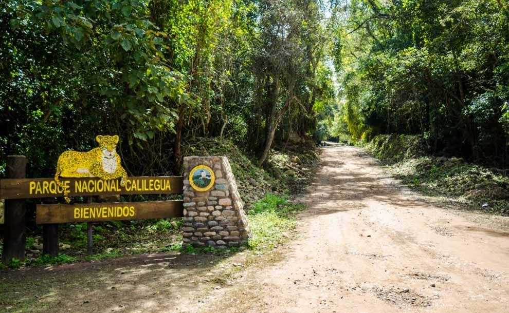 Dejan mil hectáreas de área protegida en manos de empresa petrolera